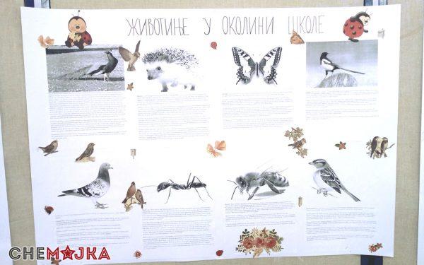 OS Stevan Aleksic Jasa Tomic - Chemajka Akcija 6Artboard 1